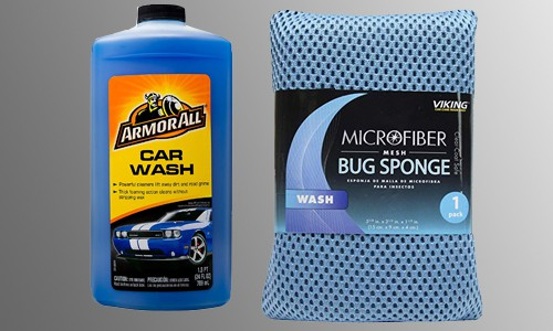 sponge and soap for removing bugs